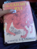 Day 254: Catcher in the Rye